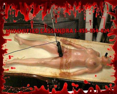 vacuum seal sex bondage